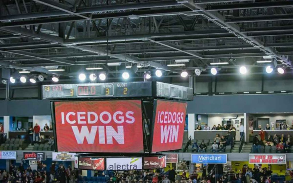 ice dogs win
