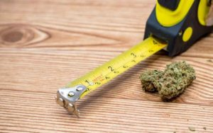 Drawing the Line on Cannabis Use in Ontario Construction Workplaces