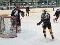 Niagara IceDogs training camp preview