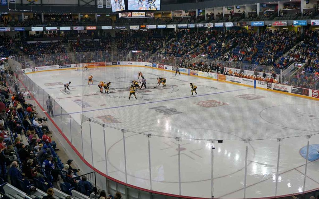 ice dogs playing hocking in the meridian centre