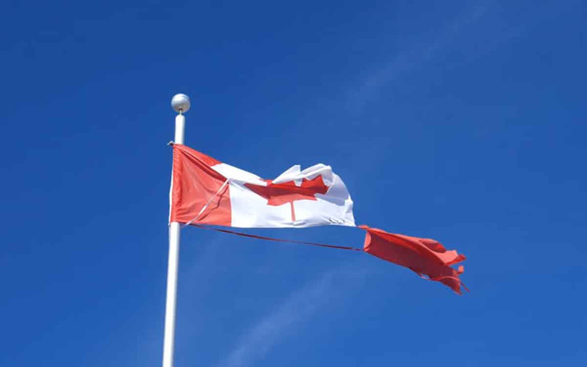 torn Canadian flag
