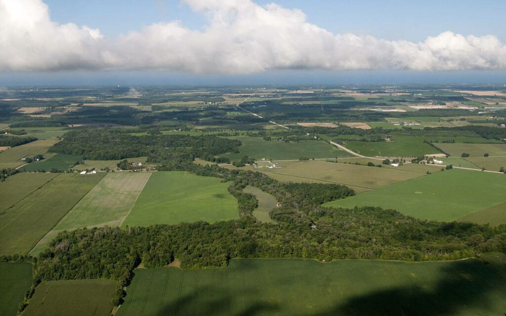 overhead shot of some fields